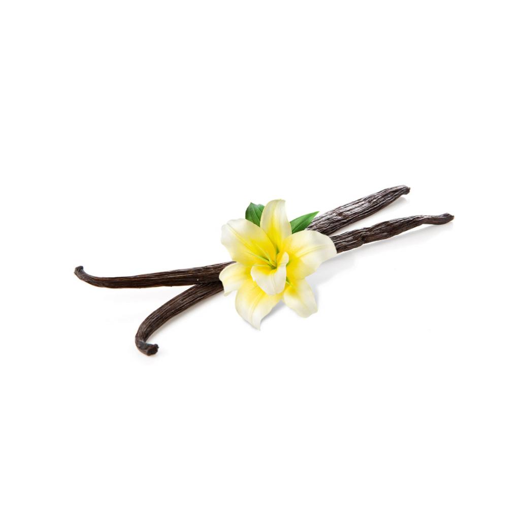 pravá vanilka